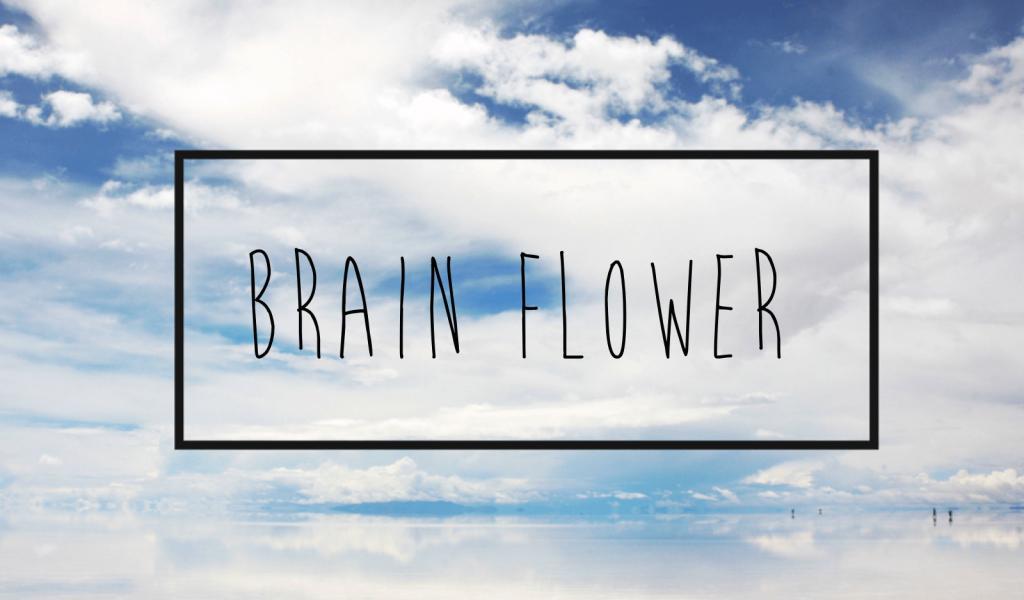 telecharger-brain-flower