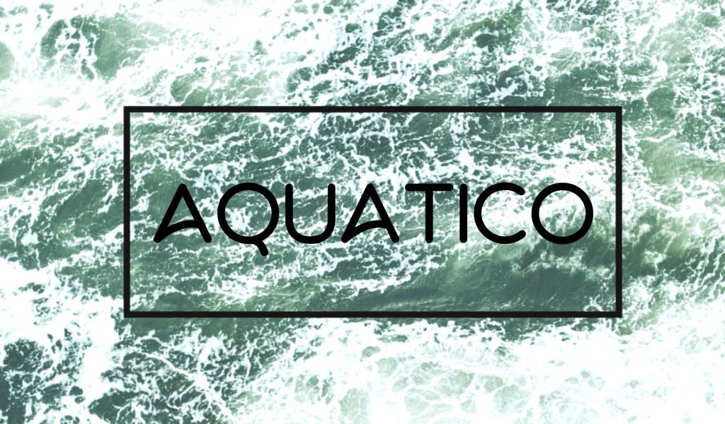 typographie-design-aquatico